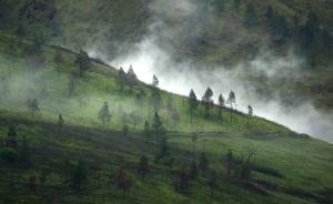 embun pegunungan
